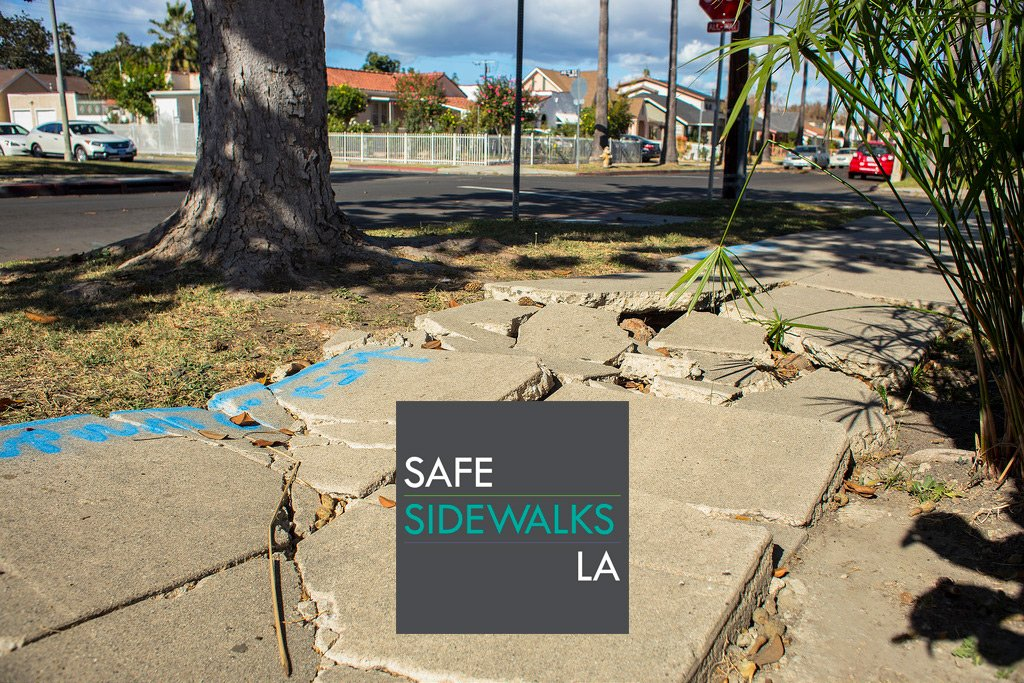 The Sidewalk Repair Program Environmental Review Has Begun
