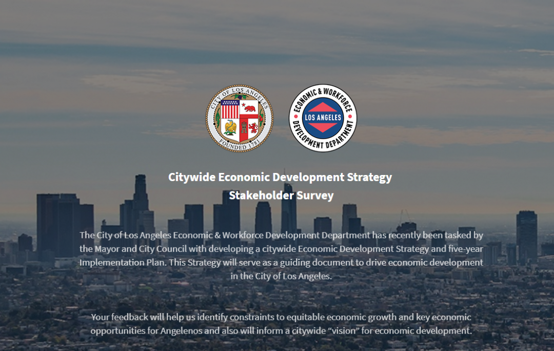 Citywide Economic Development Stakeholder Survey